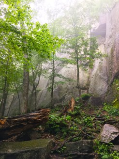 Foggy Crag Day